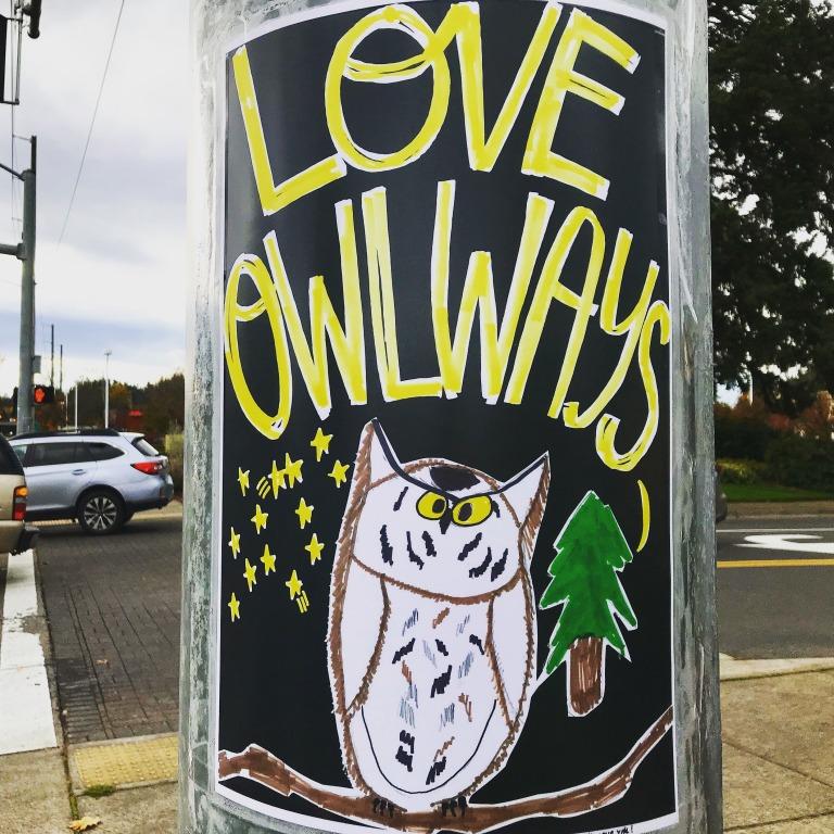 LoveOwlways